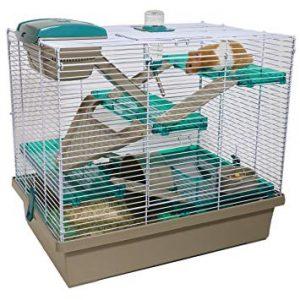 caga hamster